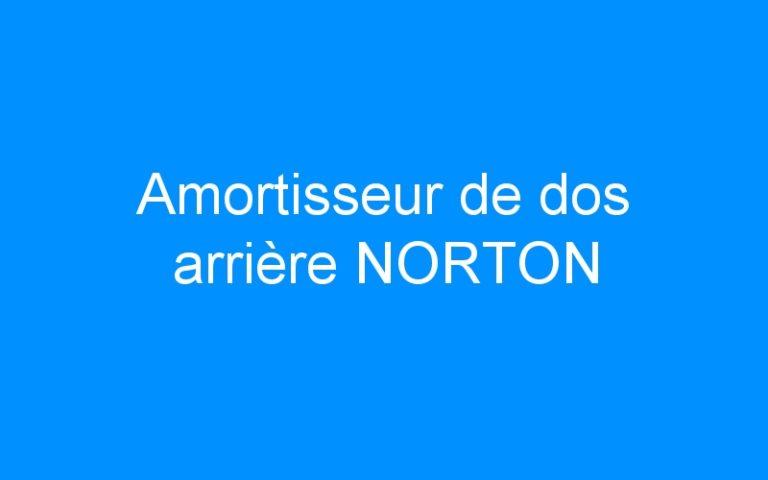 Amortisseur de dos arrière NORTON