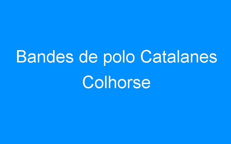 Bandes de polo Catalanes Colhorse