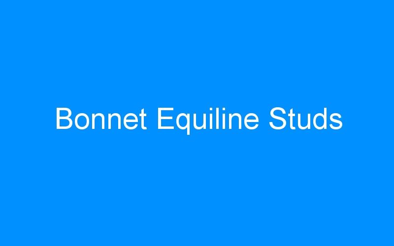 Bonnet Equiline Studs