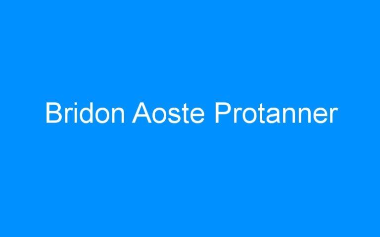 Bridon Aoste Protanner