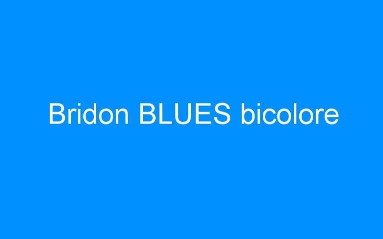 Bridon BLUES bicolore