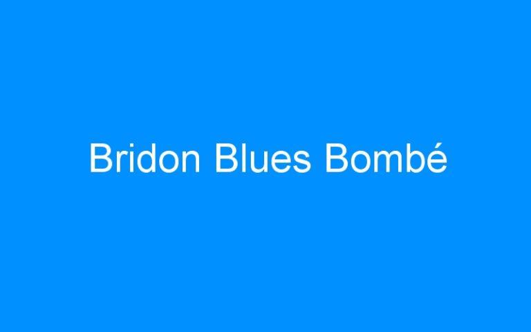 Bridon Blues Bombé