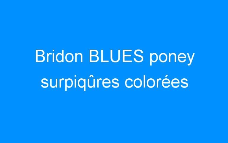 Bridon BLUES poney surpiqûres colorées