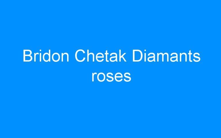 Bridon Chetak Diamants roses