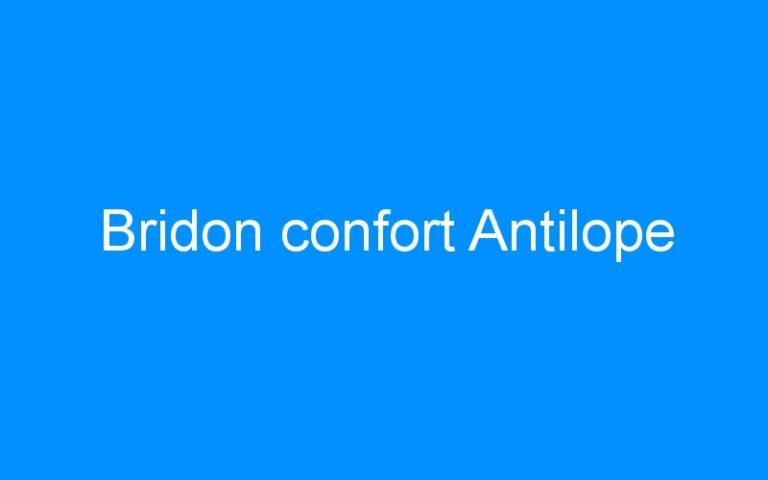Bridon confort Antilope