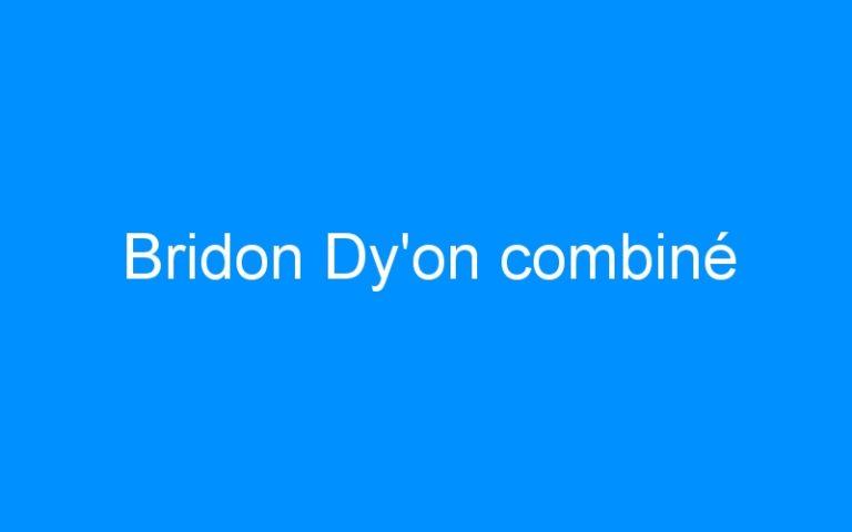 Bridon Dy'on combiné