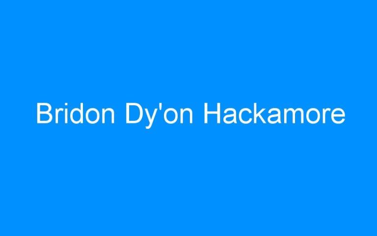 Bridon Dy'on Hackamore
