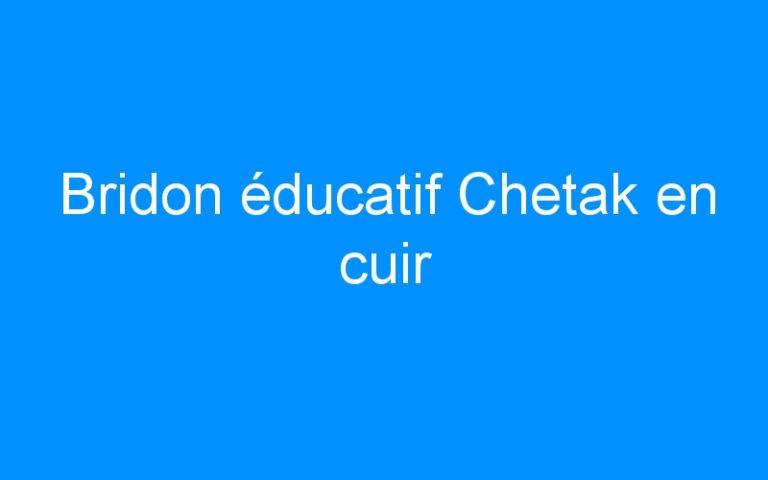 Bridon éducatif Chetak en cuir