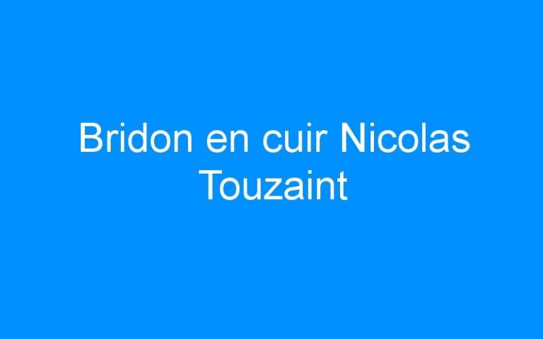 Bridon en cuir Nicolas Touzaint