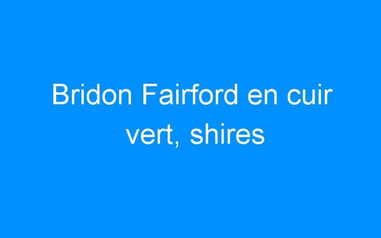 Bridon Fairford en cuir vert, shires