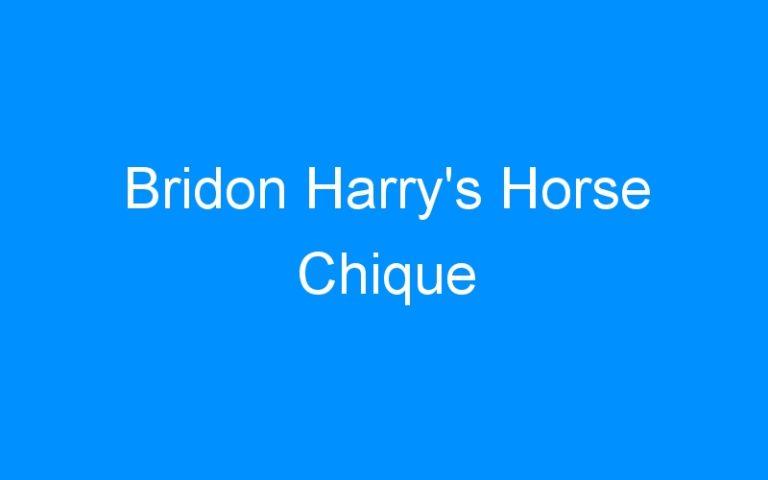Bridon Harry's Horse Chique