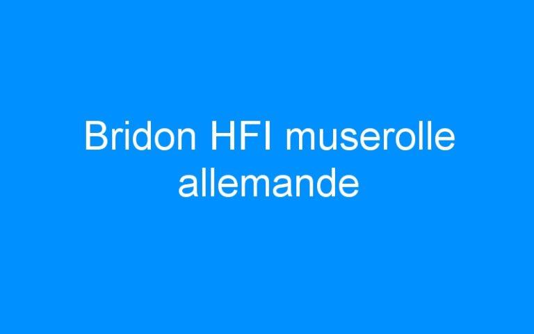 Bridon HFI muserolle allemande