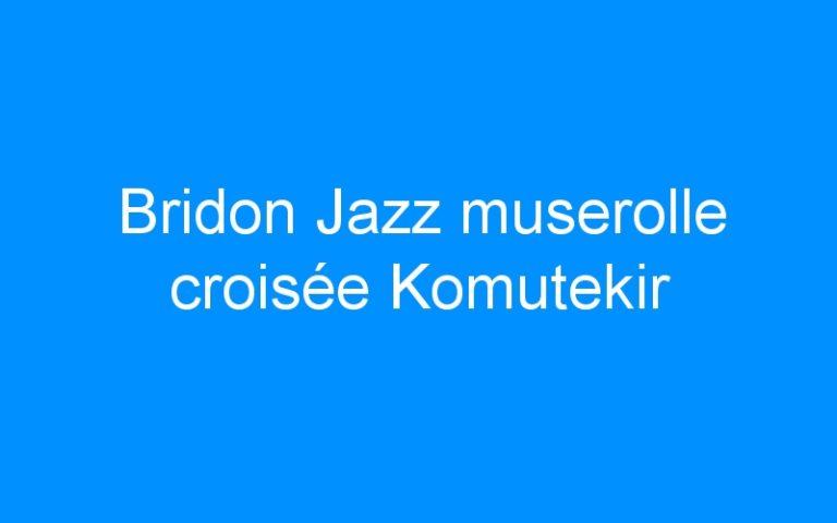 Bridon Jazz muserolle croisée Komutekir