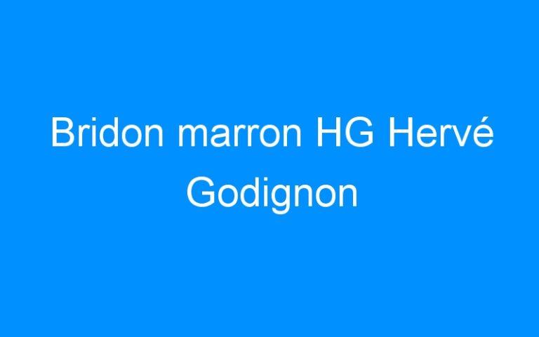 Bridon marron HG Hervé Godignon