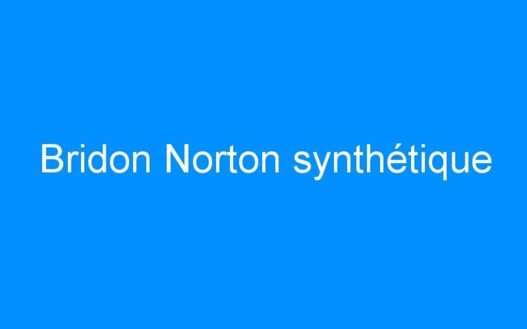 Bridon Norton synthétique