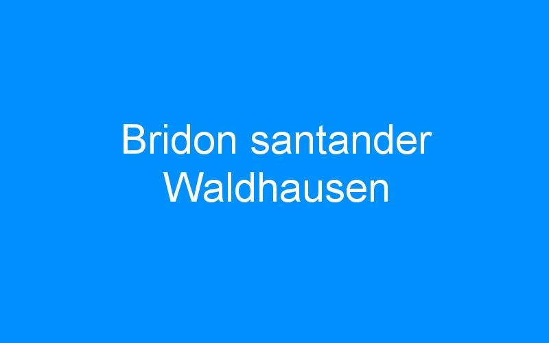 Bridon santander Waldhausen
