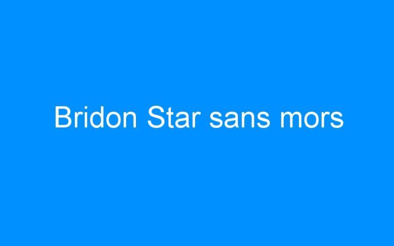 Bridon Star sans mors