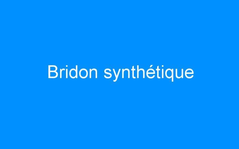 Bridon synthétique