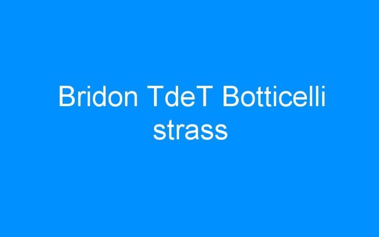 Bridon TdeT Botticelli strass