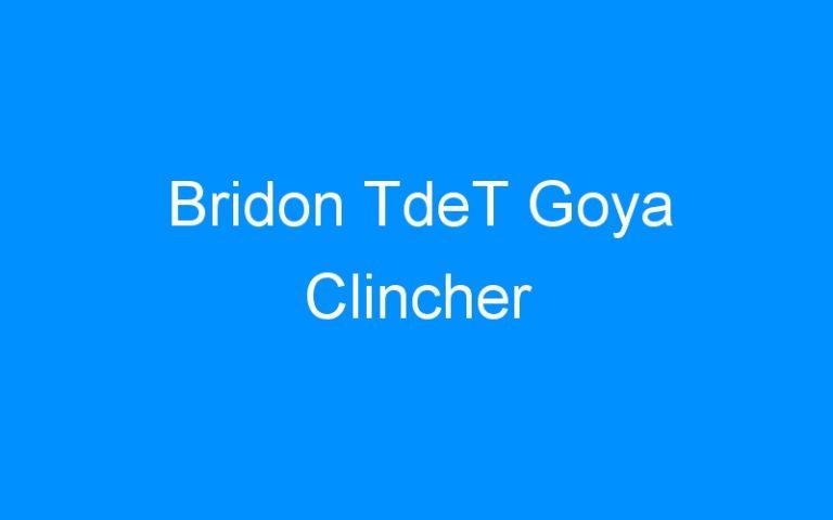 Bridon TdeT Goya Clincher