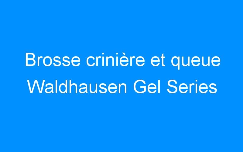 Brosse crinière et queue Waldhausen Gel Series