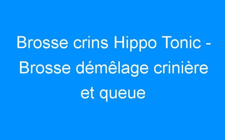 Brosse crins Hippo Tonic – Brosse démêlage crinière et queue