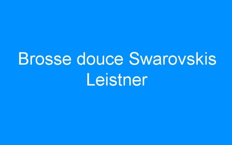 Brosse douce Swarovskis Leistner