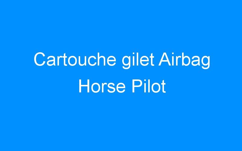 Cartouche gilet Airbag Horse Pilot