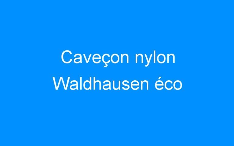 Caveçon nylon Waldhausen éco