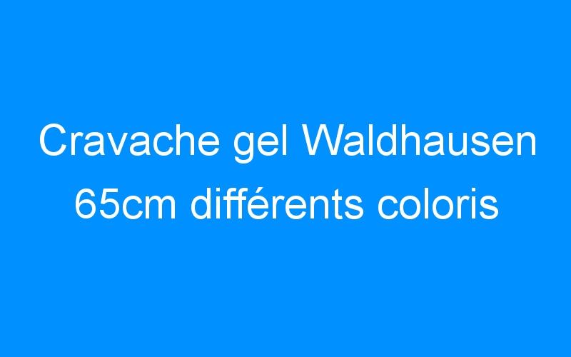 Cravache gel Waldhausen 65cm différents coloris