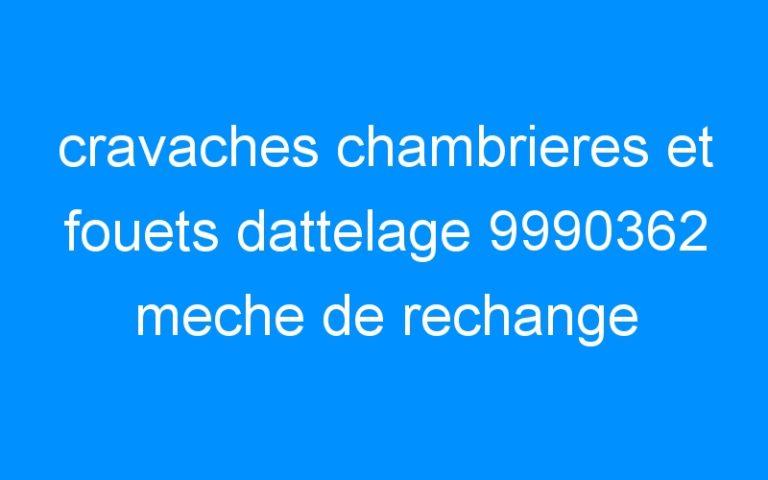 cravaches chambrieres et fouets dattelage 9990362 meche de rechange westfield
