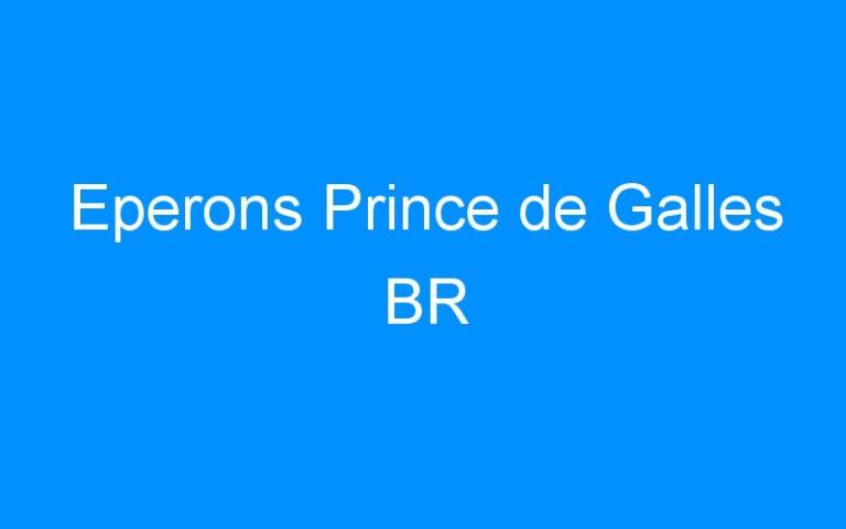 Eperons Prince de Galles BR