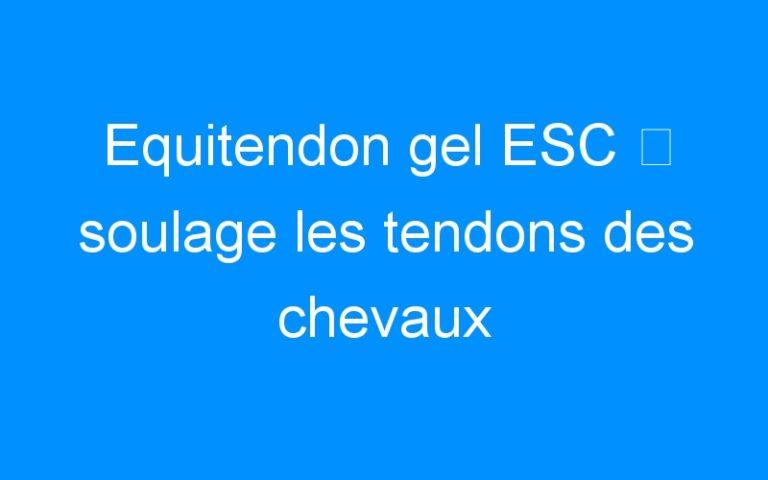 Equitendon gel ESC ⇒ soulage les tendons des chevaux