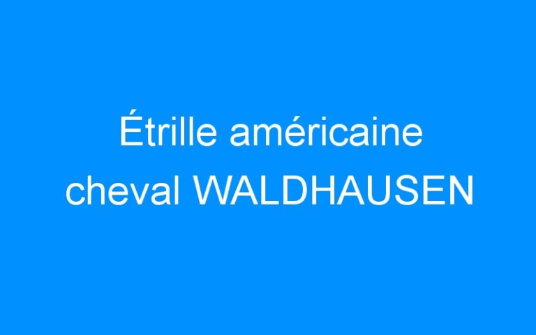 Étrille américaine cheval WALDHAUSEN