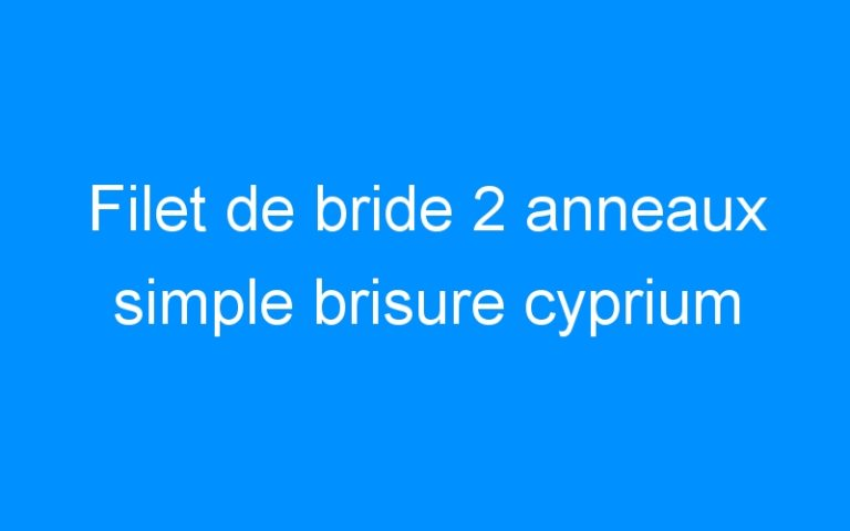 Filet de bride 2 anneaux simple brisure cyprium