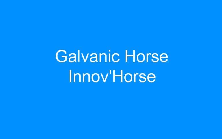 Galvanic Horse Innov'Horse
