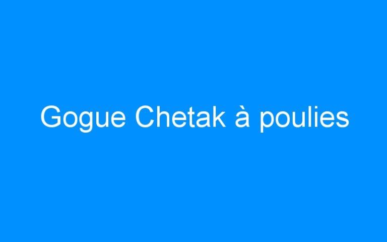 Gogue Chetak à poulies