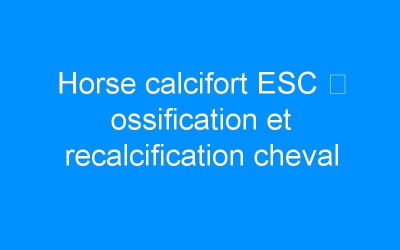 Horse calcifort ESC ⇒ ossification et recalcification cheval