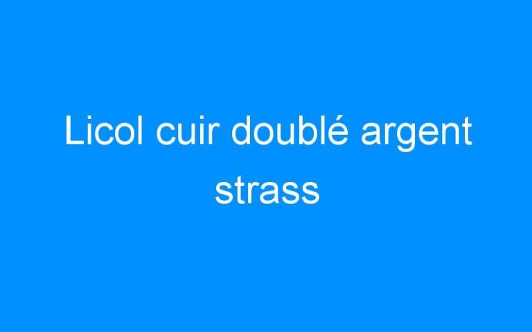 Licol cuir doublé argent strass
