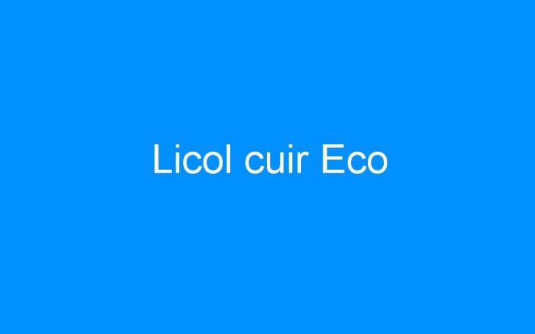 Licol cuir Eco