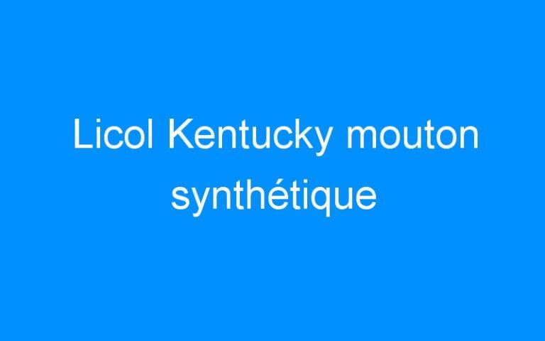 Licol Kentucky mouton synthétique