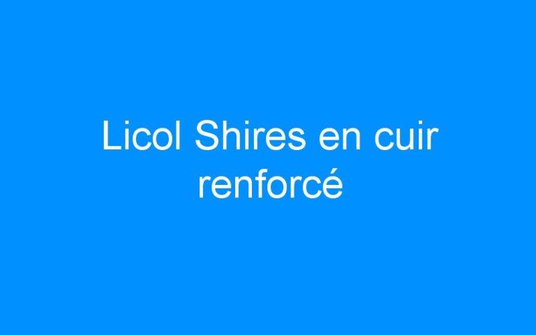 Licol Shires en cuir renforcé