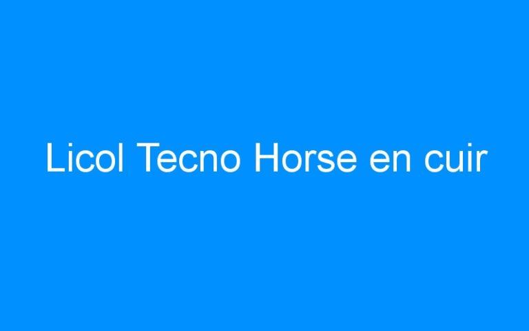 Licol Tecno Horse en cuir