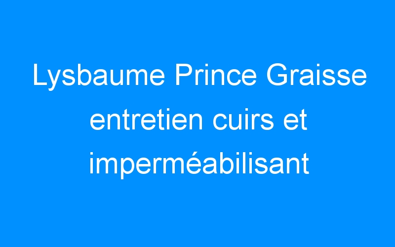 Lysbaume Prince Graisse entretien cuirs et imperméabilisant