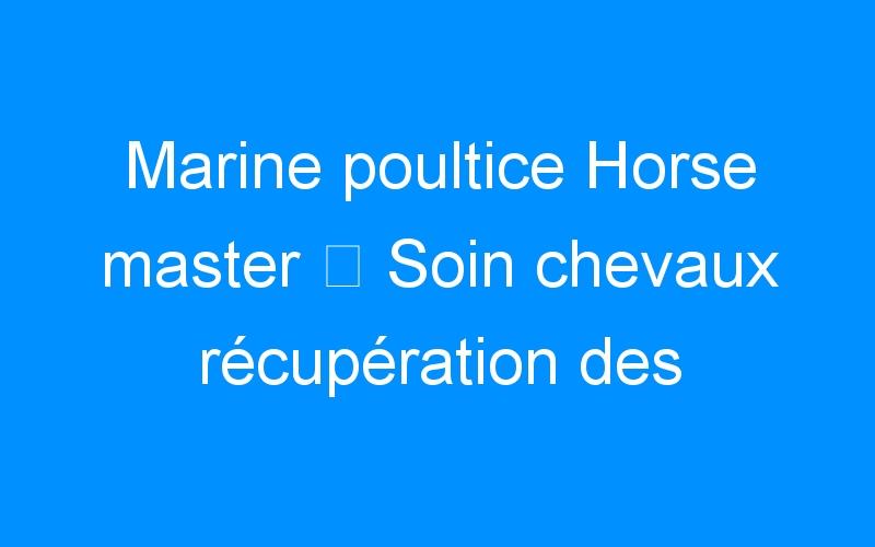 Marine poultice Horse master ⇒ Soin chevaux récupération des membres