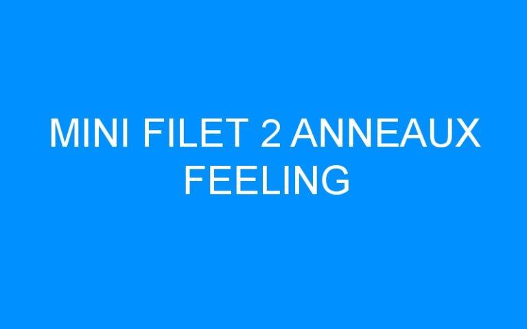 MINI FILET 2 ANNEAUX FEELING