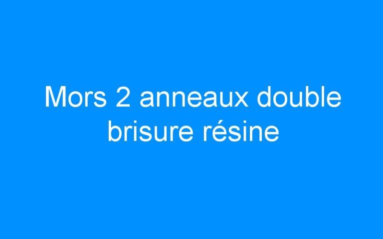 Mors 2 anneaux double brisure résine