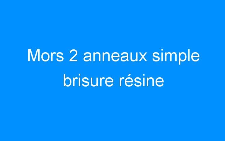 Mors 2 anneaux simple brisure résine