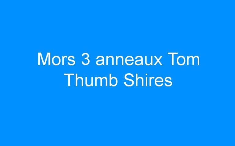 Mors 3 anneaux Tom Thumb Shires