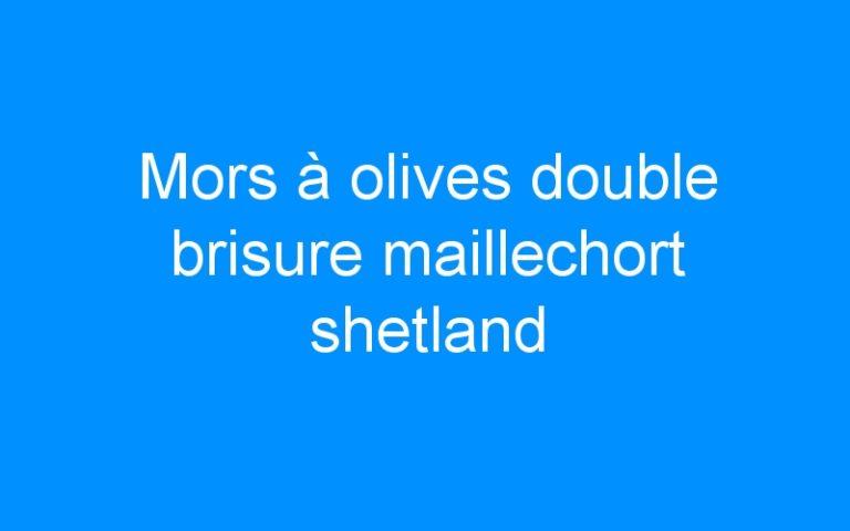 Mors à olives double brisure maillechort shetland